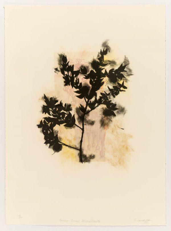 Lithograph by Suzi Davidoff