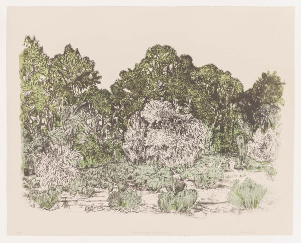 Three-color lithograph by Nancy Friese.
