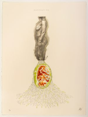 Two-color lithograph by Rosana Paulino.