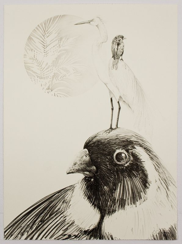 Lithograph by Osmeivy Ortego Pacheco with a trio of Caribbean birds in gray tones stacked vertically in a soft white background.